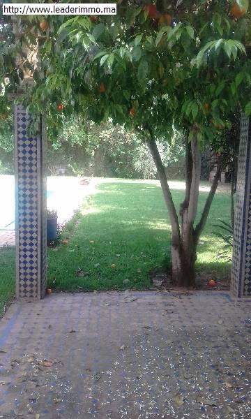 Rabat quartier Souissi la pinéde; Location villa 1200 m²